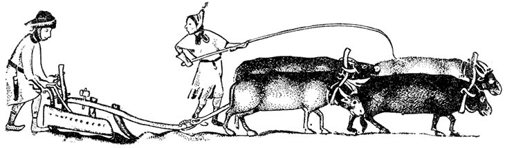 Пропашная система земледелия